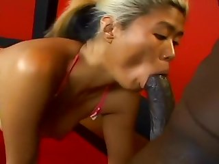 Asian Chick Blows Huge Black Cock